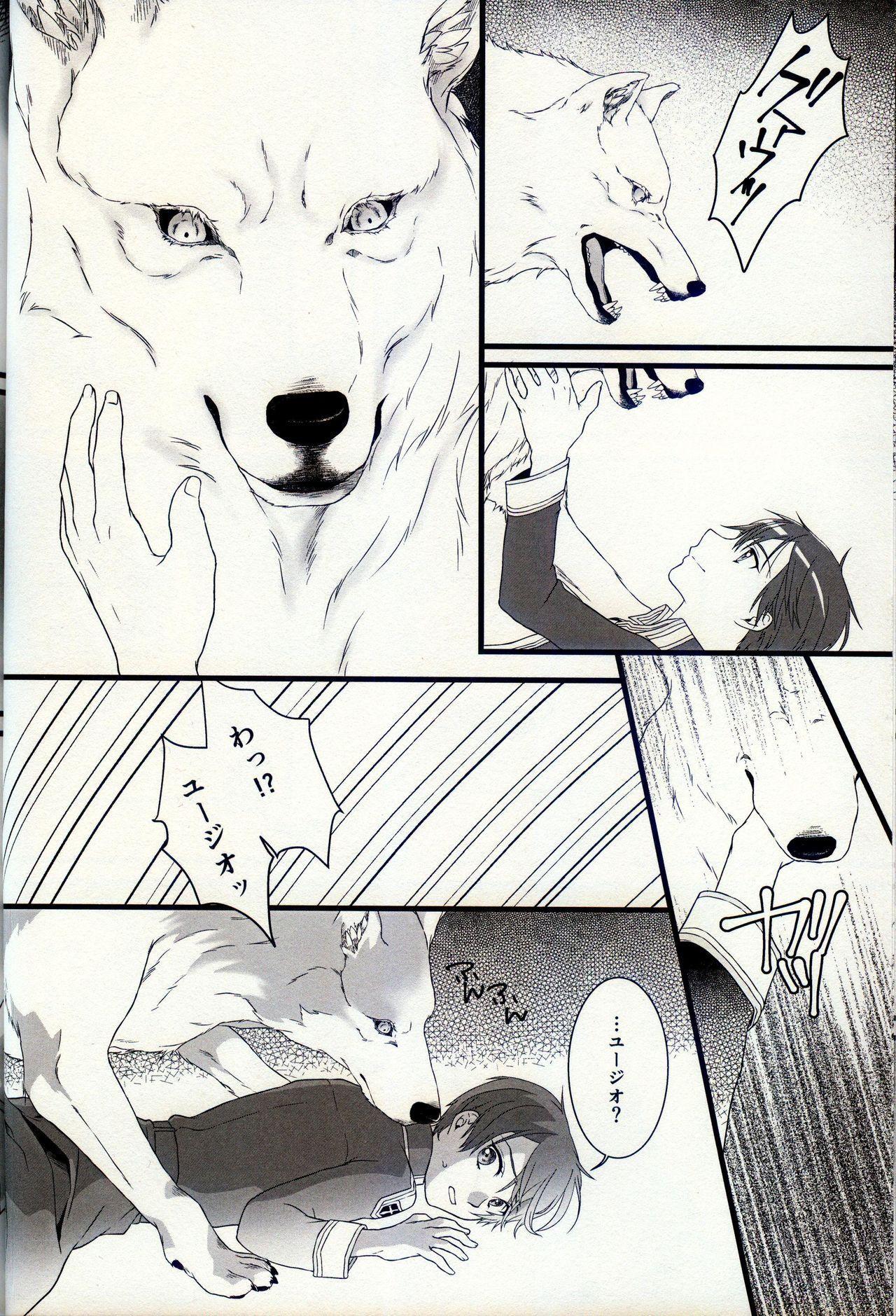 終わらないお伽噺 12