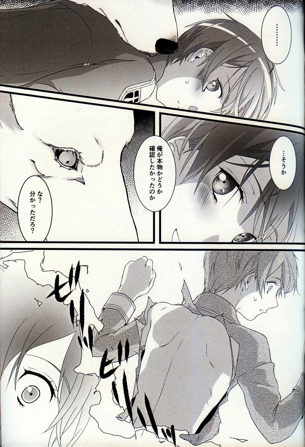 終わらないお伽噺 13