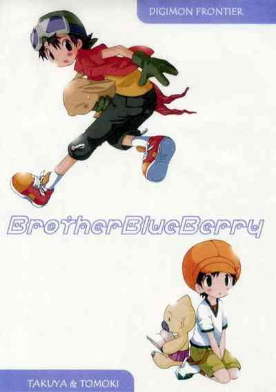 Brother Blueberry 0