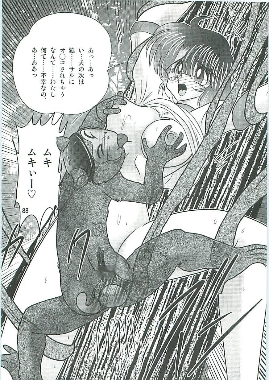 Seirei Tokusou Fairy Saber W Inukami to Innyuu 90