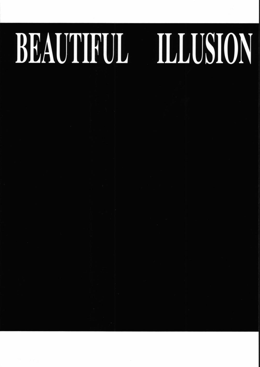 Beautiful Illusion 2 17