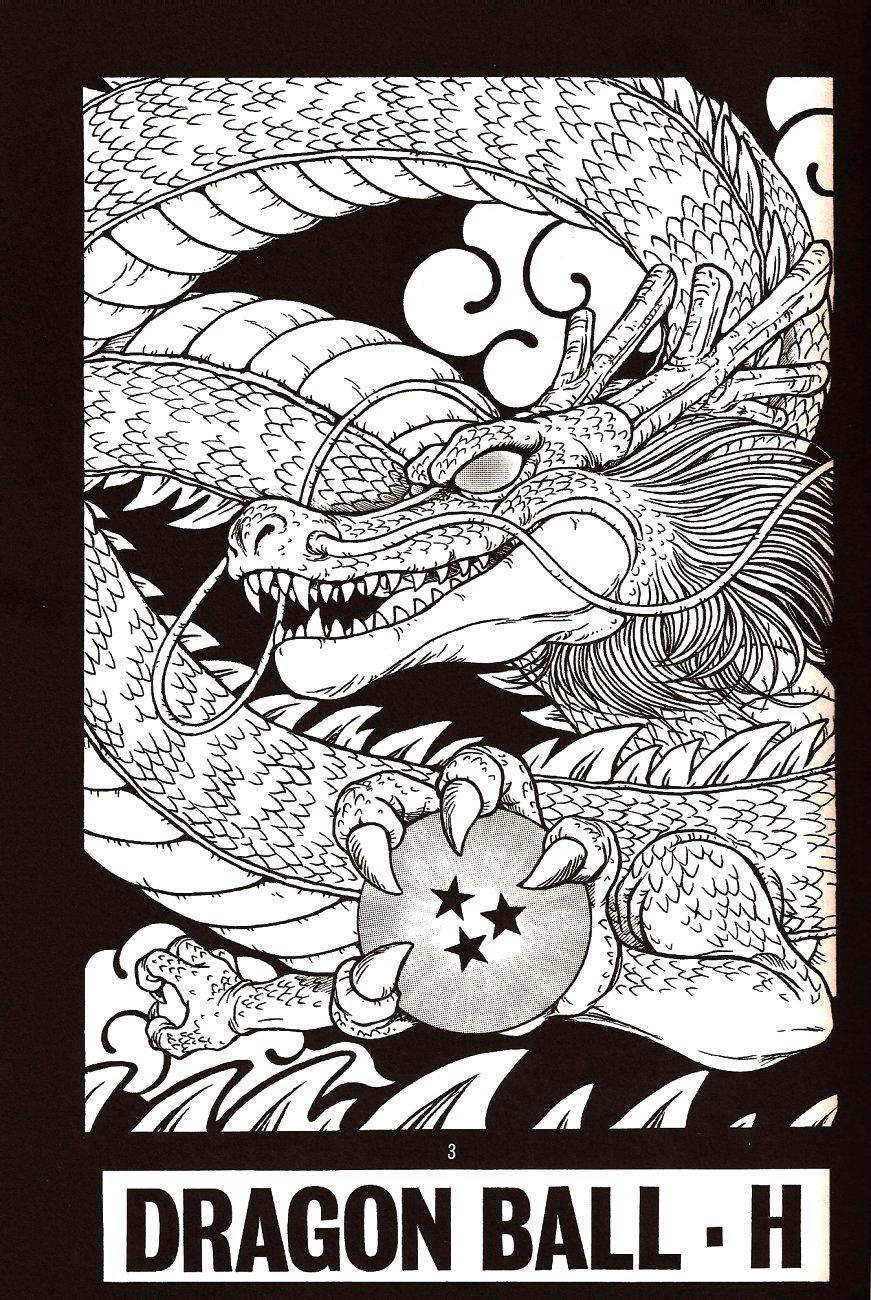 DragonBall H Maki San 1