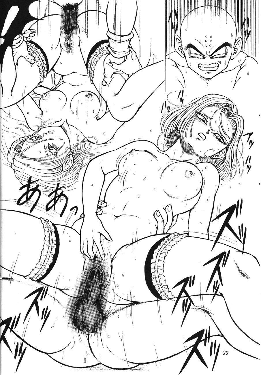 DragonBall H Maki San 20