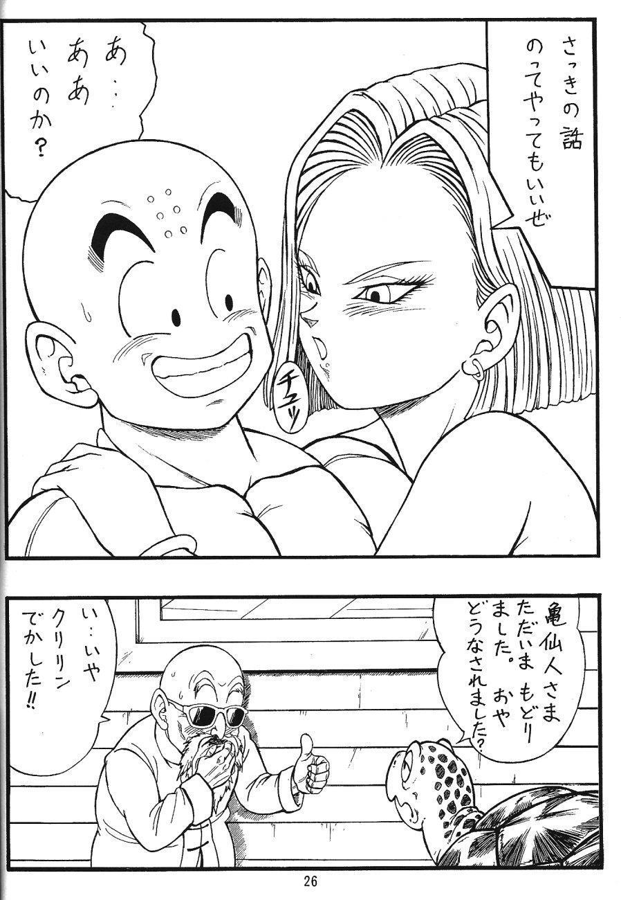 DragonBall H Maki San 24