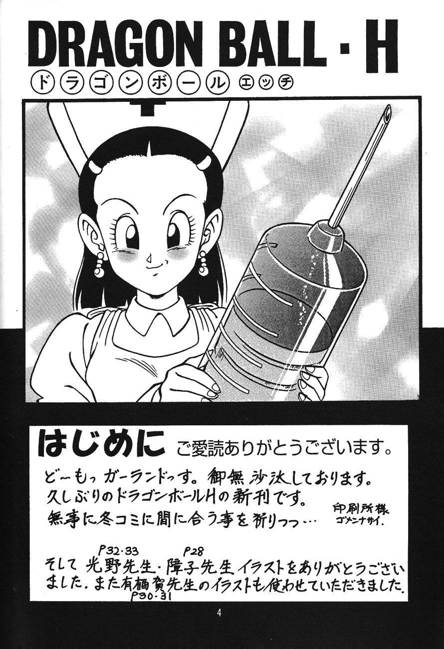 DragonBall H Maki San 2