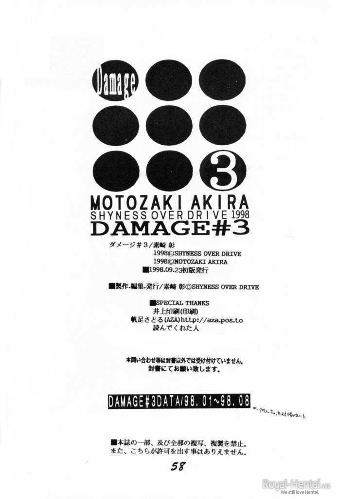 DAMAGE 3 55