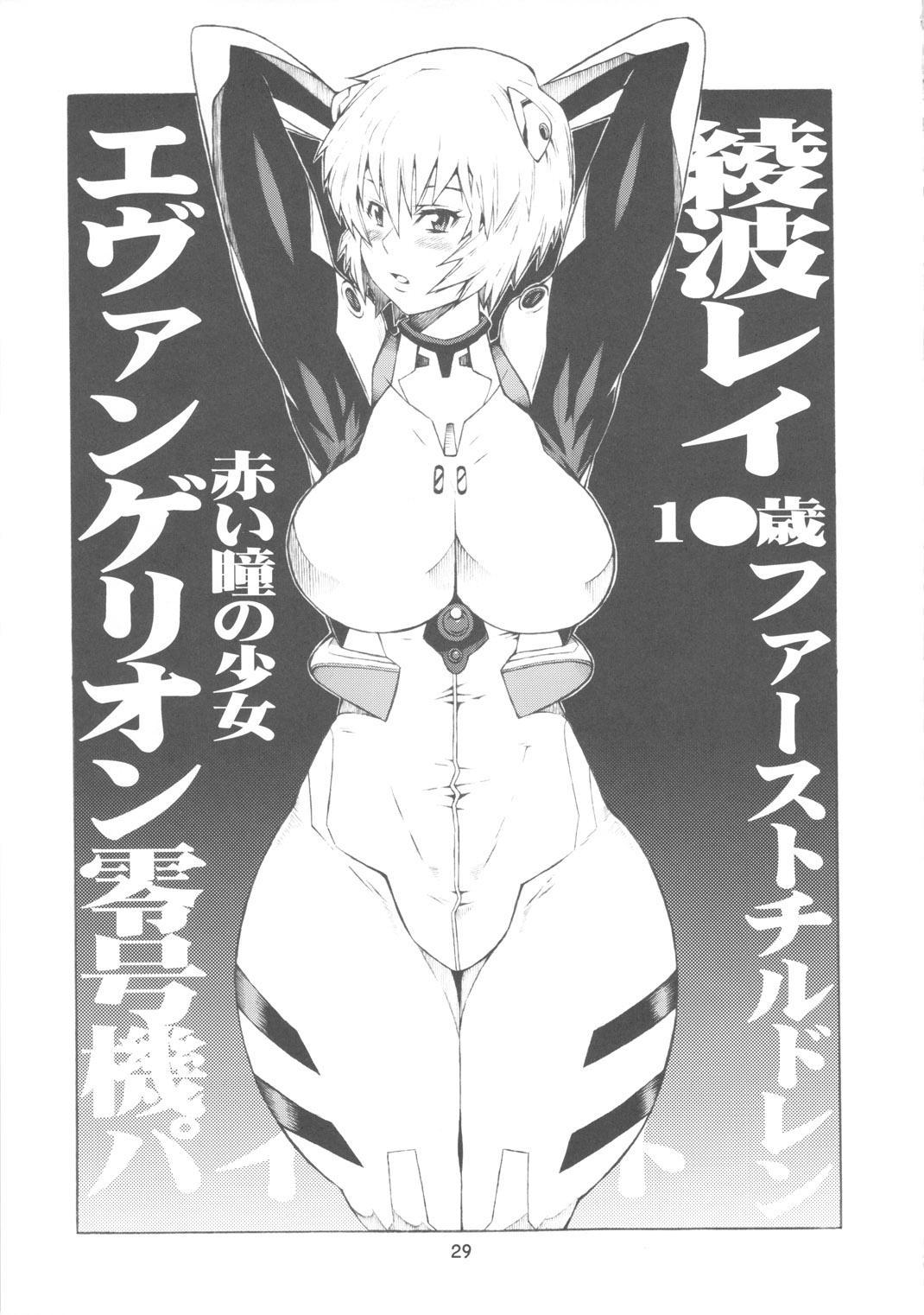 Ayanami 27