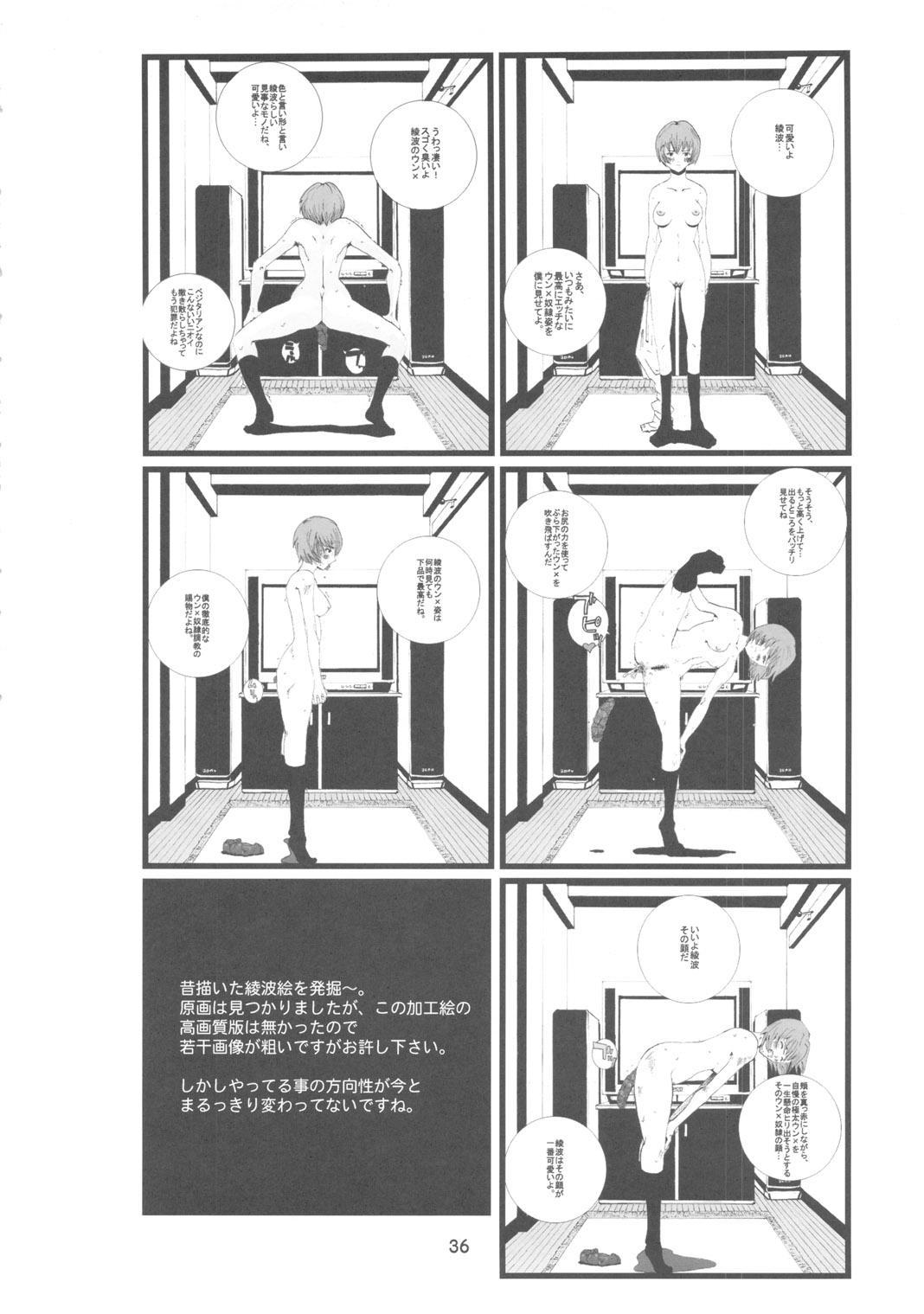 Ayanami 34