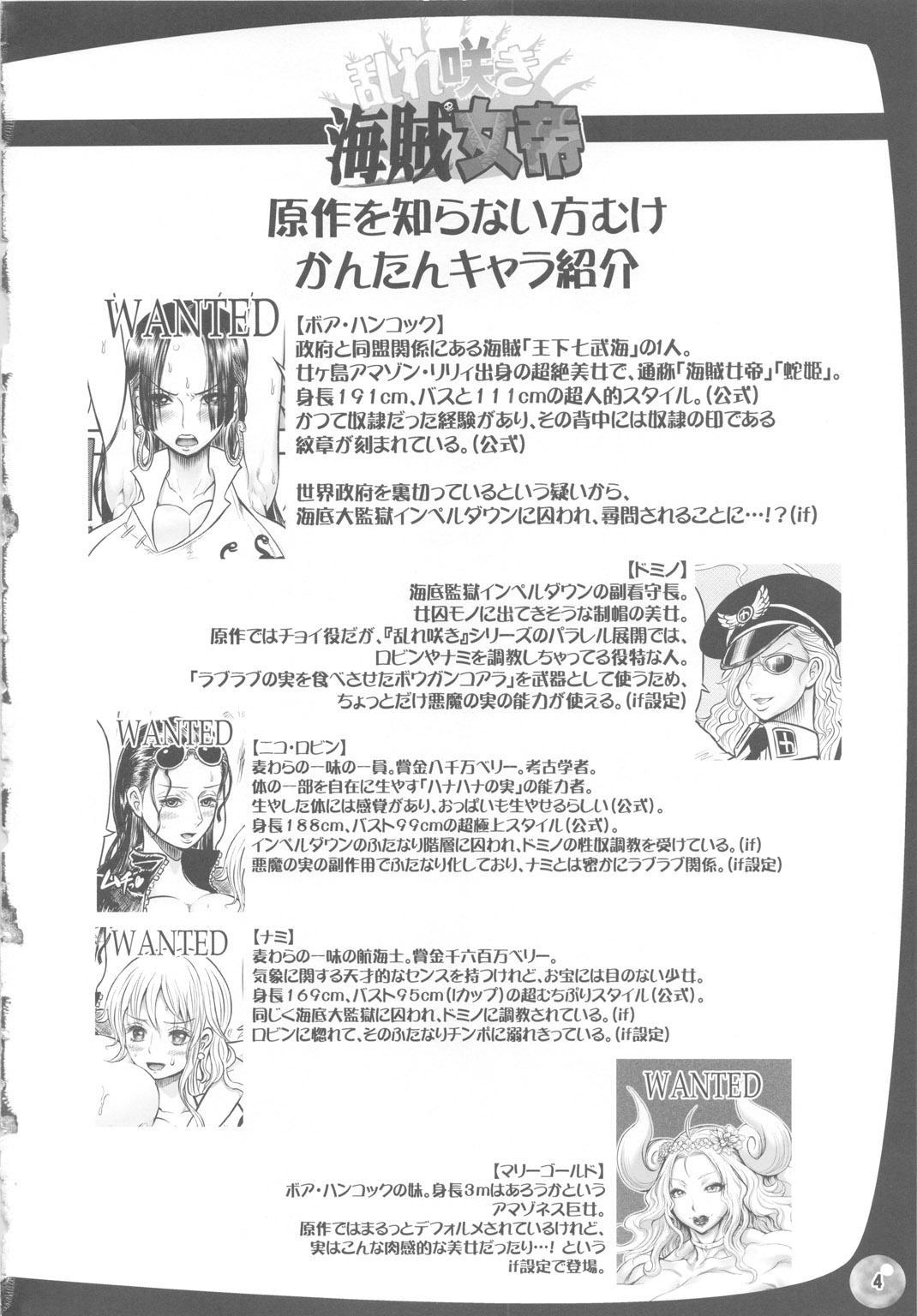 Midarezaki Kaizoku Jotei 2