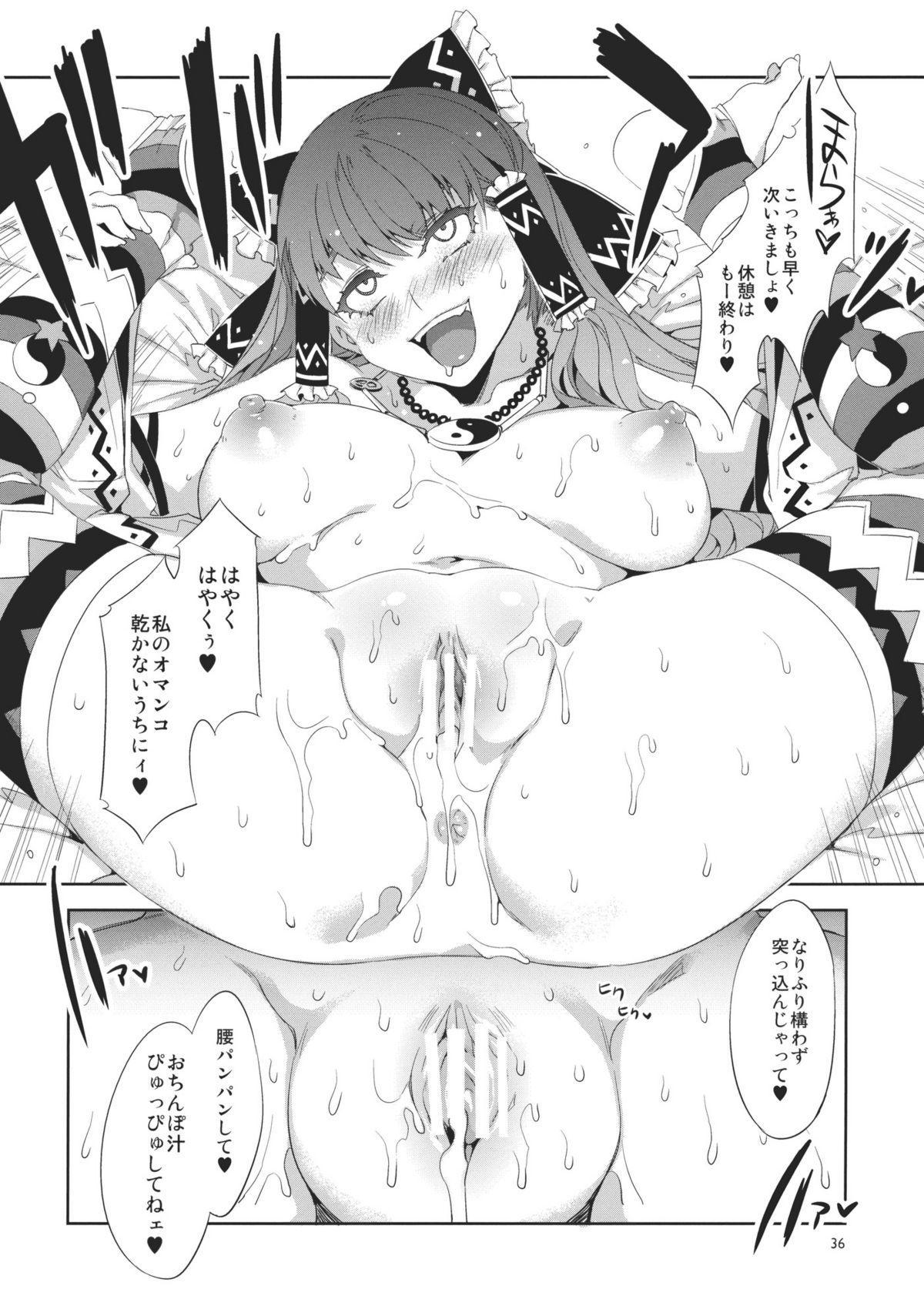 Touhou Gensou Houkai 35