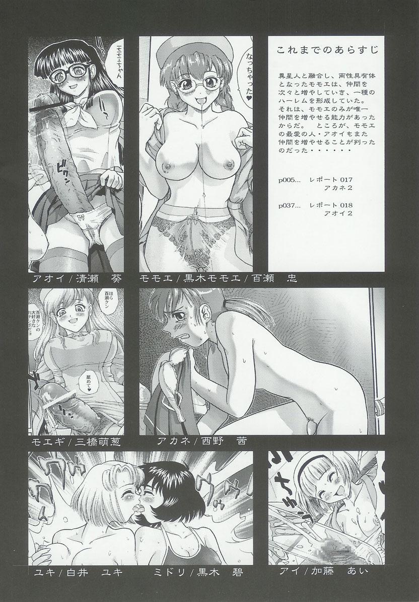 Dulce Report 6 2