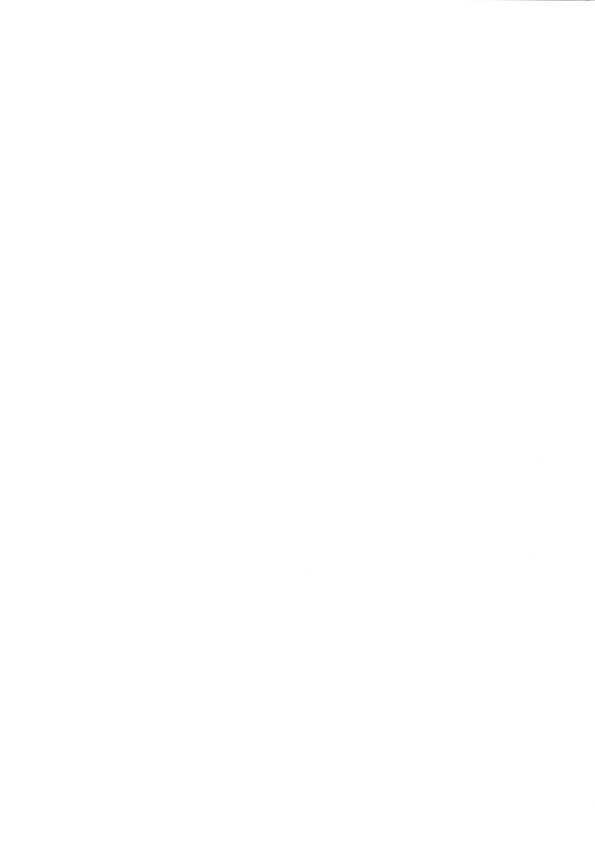 (C51) [J'sStyle (Jamming)] D2 (DOUBT TO DOUBT) Jamming Kojinshi 4 -Ditsuu- (Various) 2