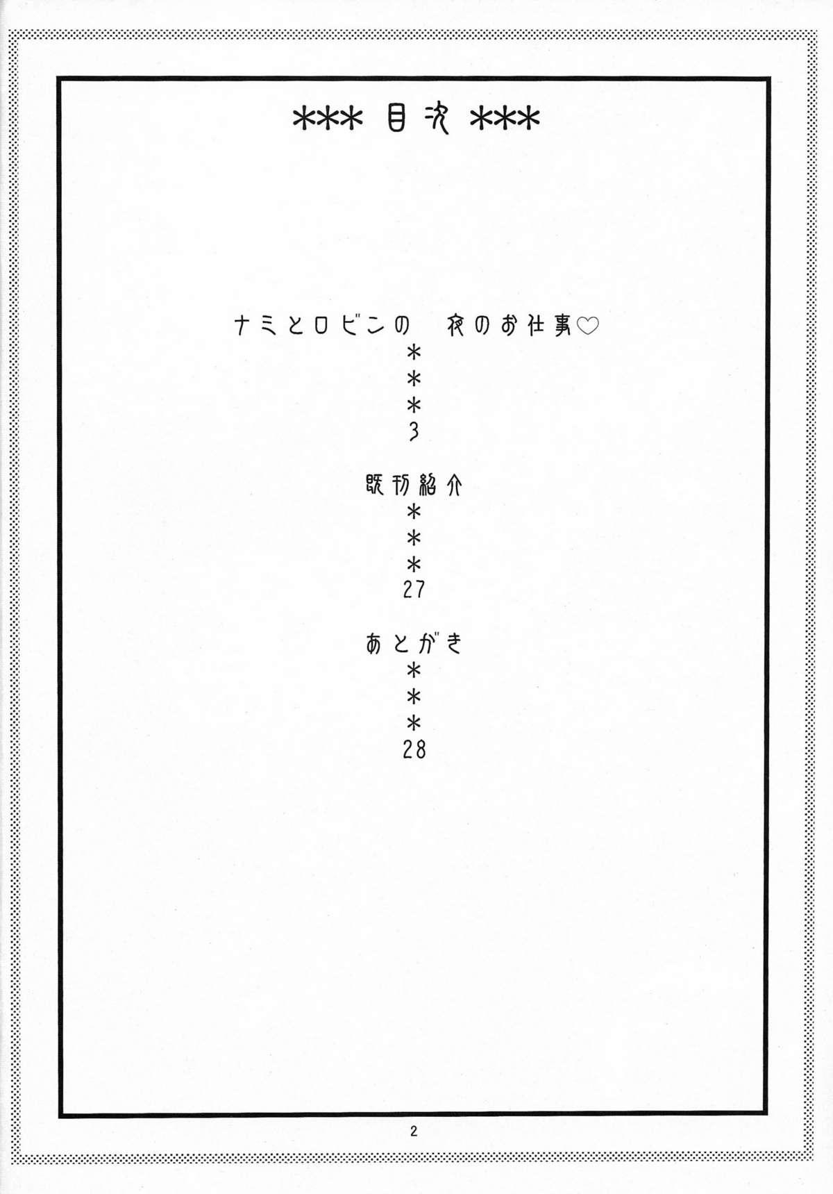 NamiRobi 5 2