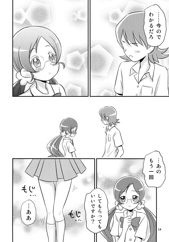 Tsubomi Plus Pianissimo 12