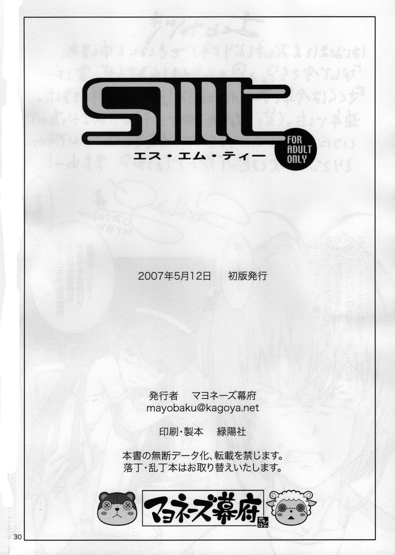 SMT 28