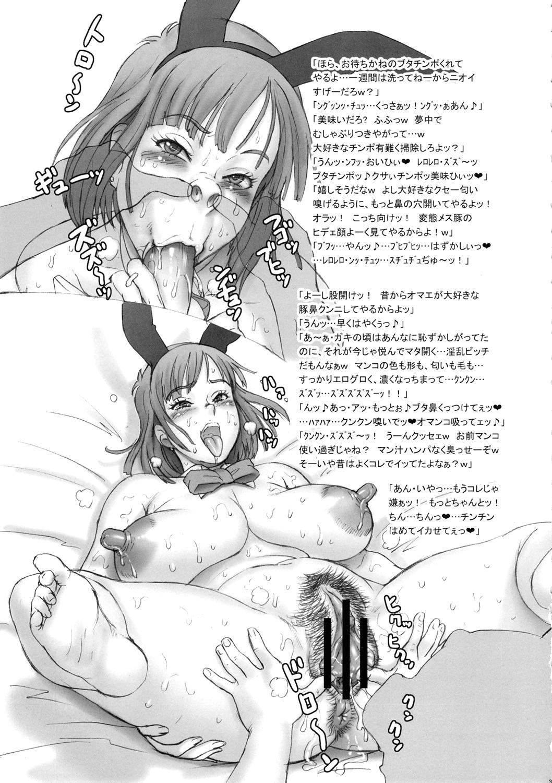 Nippon Ageruyo 33