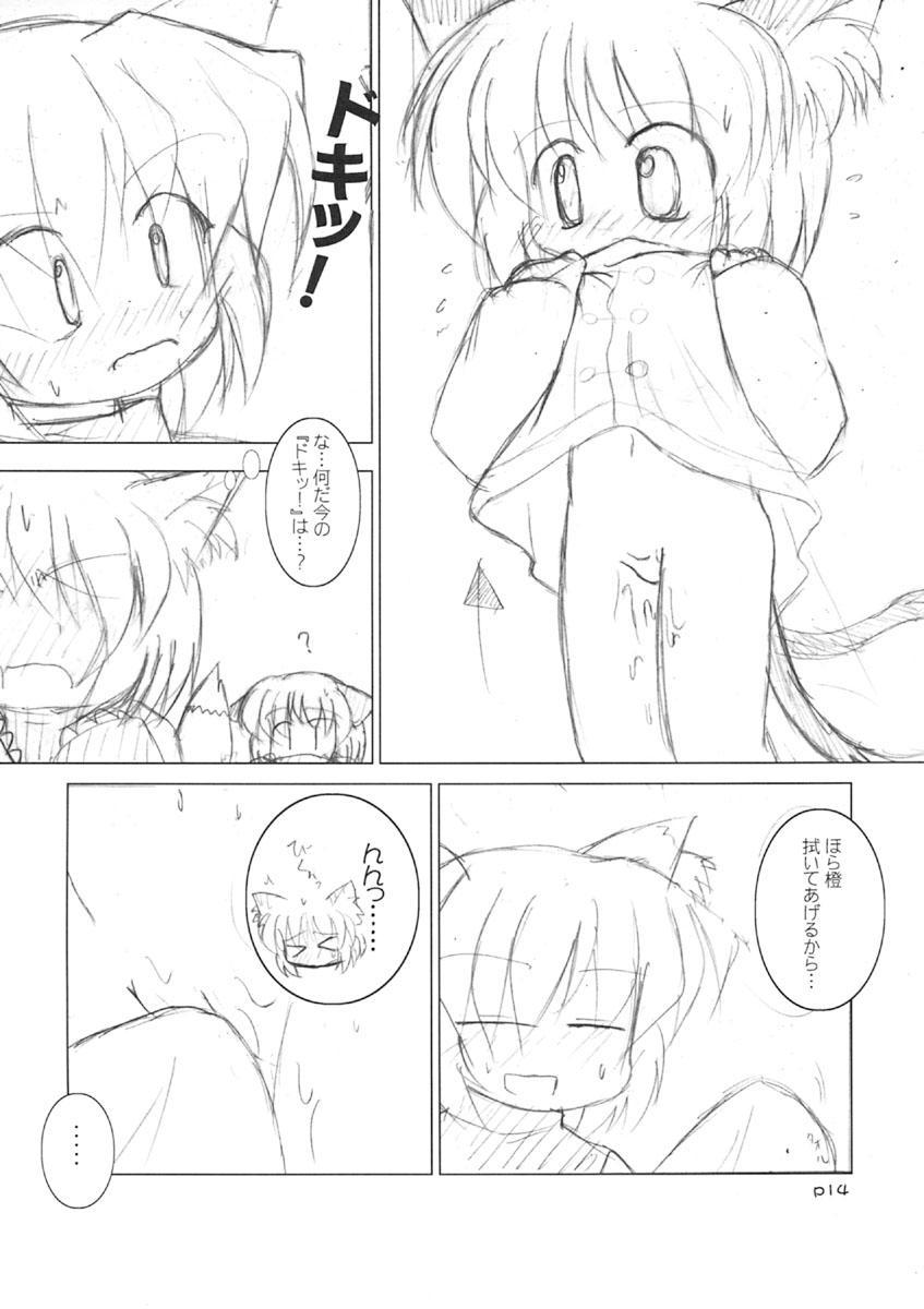 Meikyou Shisui 14