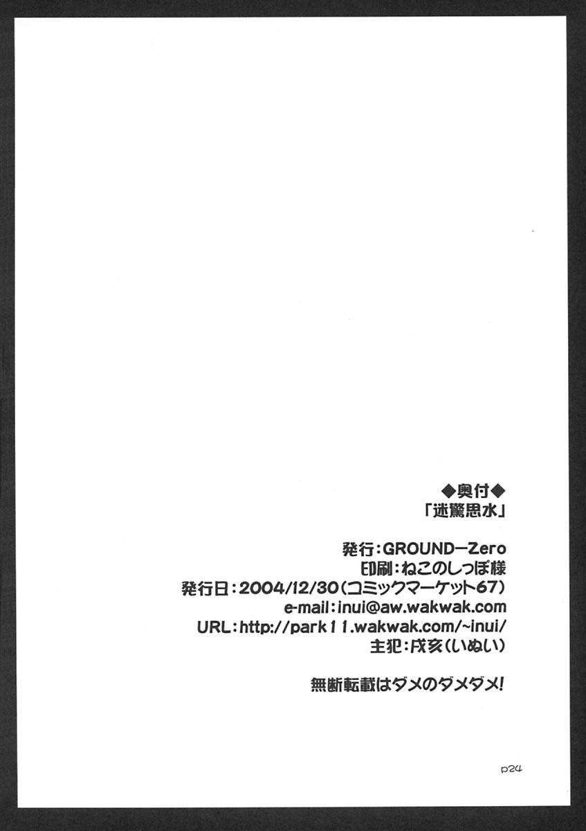 Meikyou Shisui 24