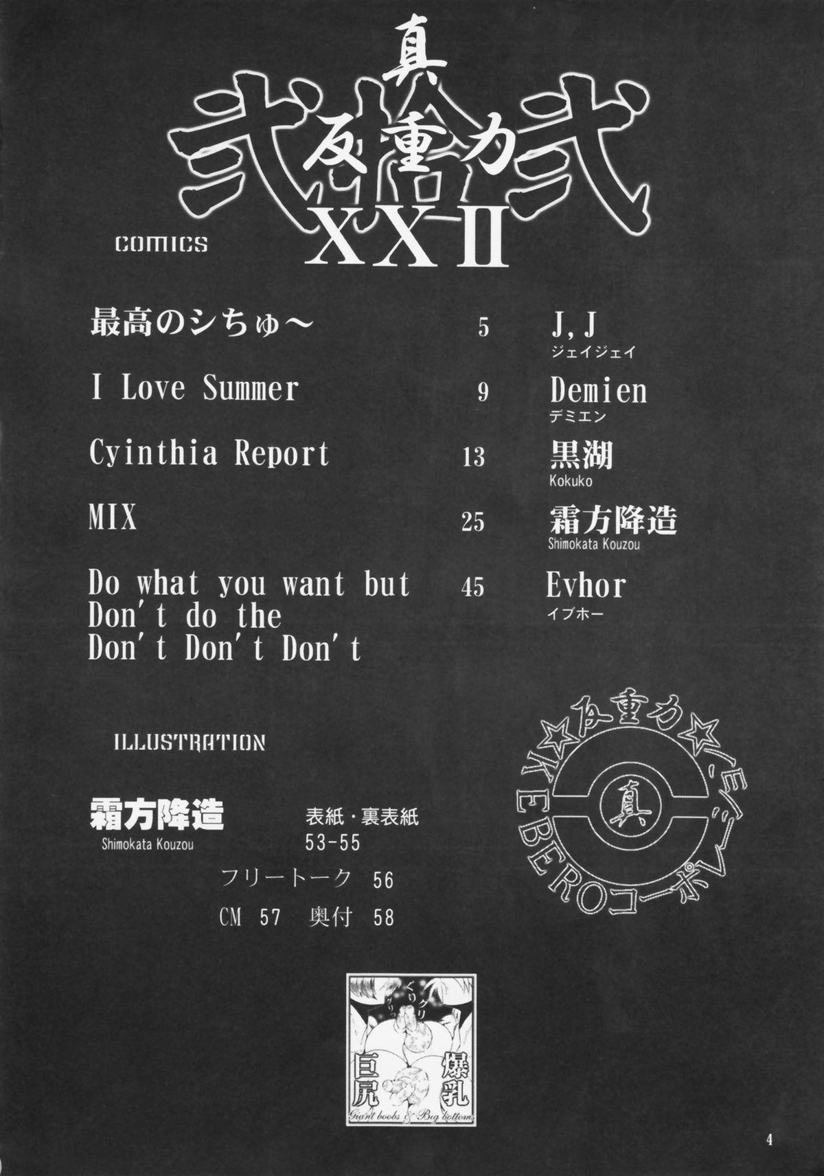 Shin Han-juuryoku XXII 3