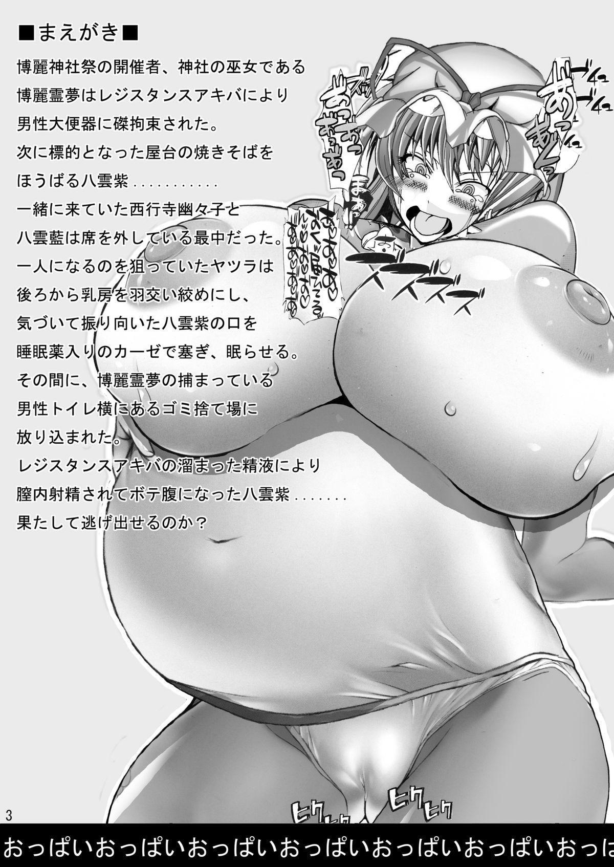 Touhou Chichi Nikusai Vol. 2 1