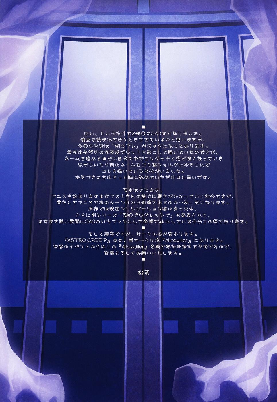 Sword Art Unlimited 25
