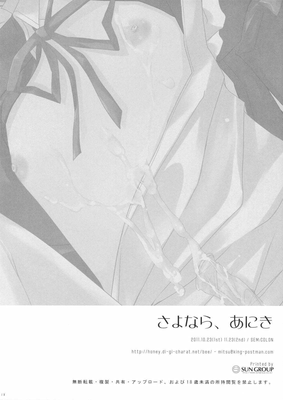 Sayonara, Aniki 16