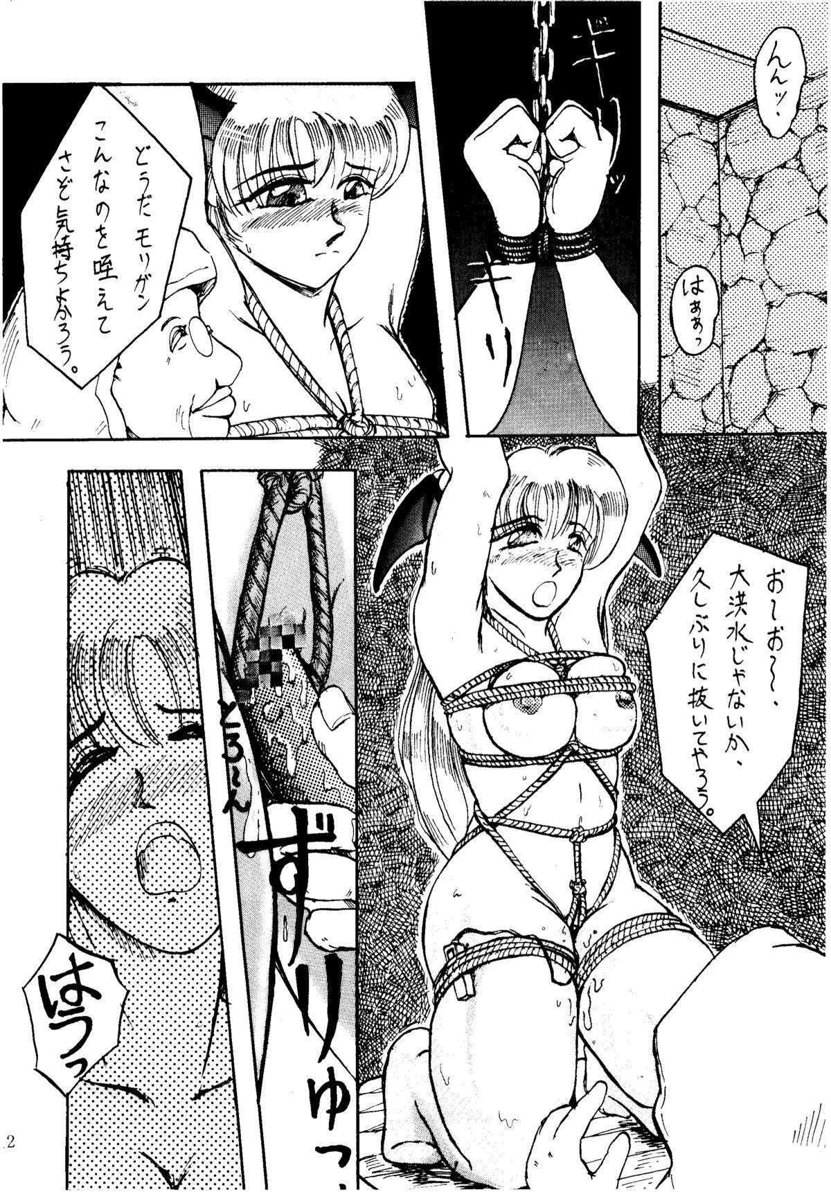 Shikiyoku Hokkedan 3 11