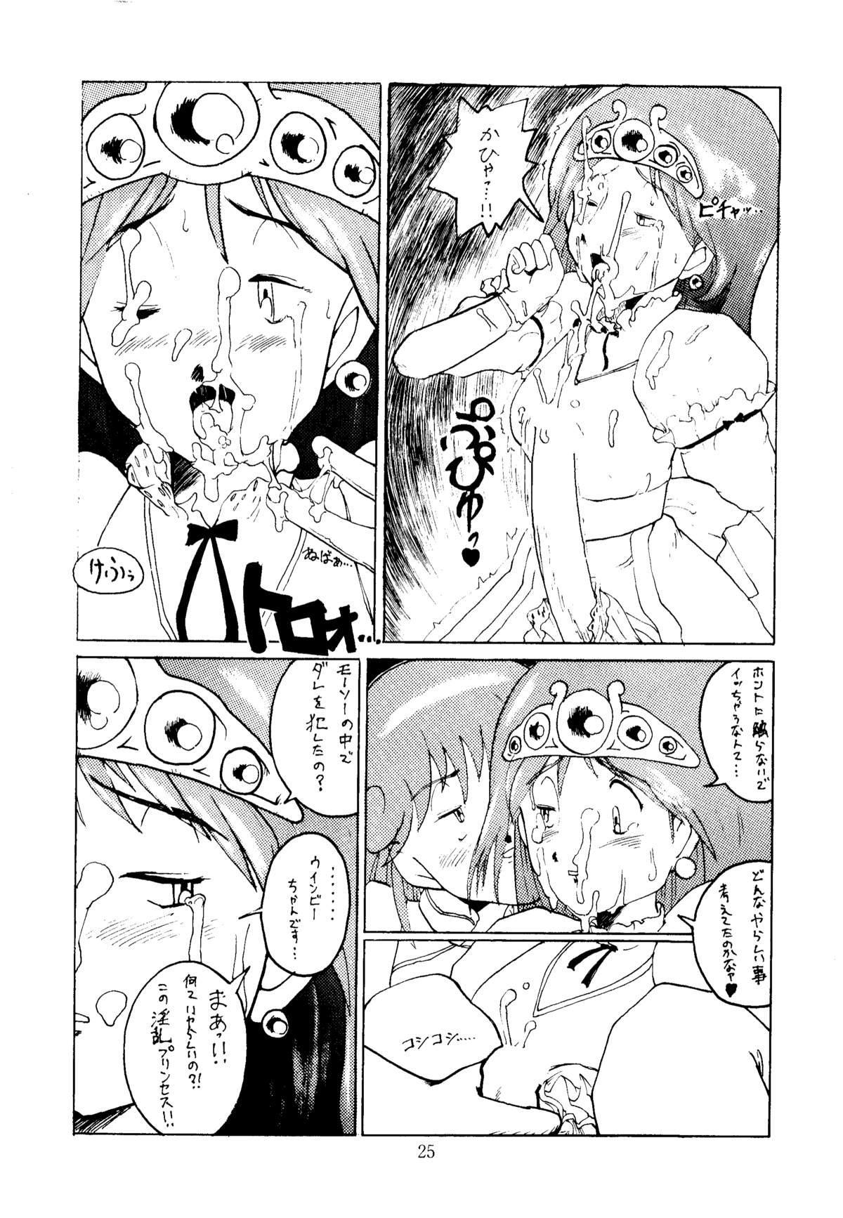 Shikiyoku Hokkedan 3 24