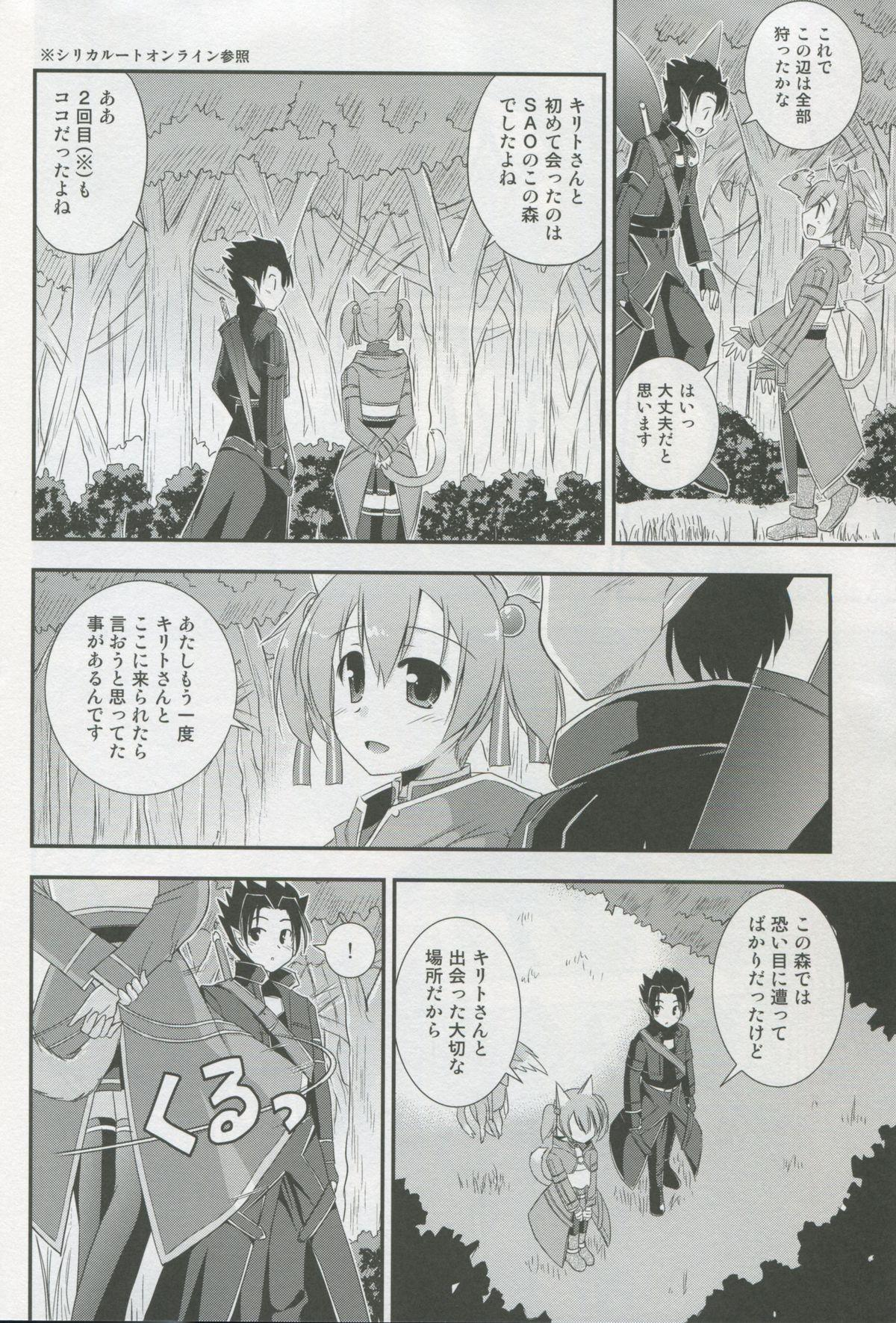 Silica Route Online 2 6
