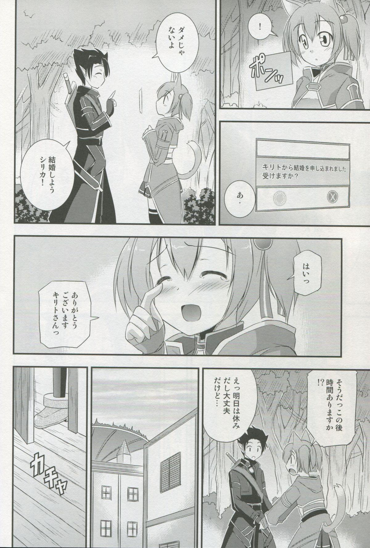 Silica Route Online 2 8