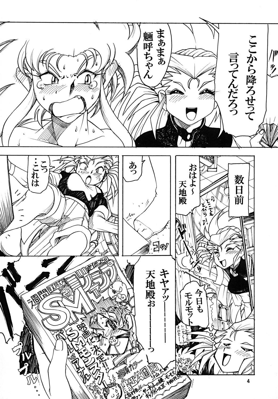 Tenchi Musou! Munomaki Kansei Zenya 3