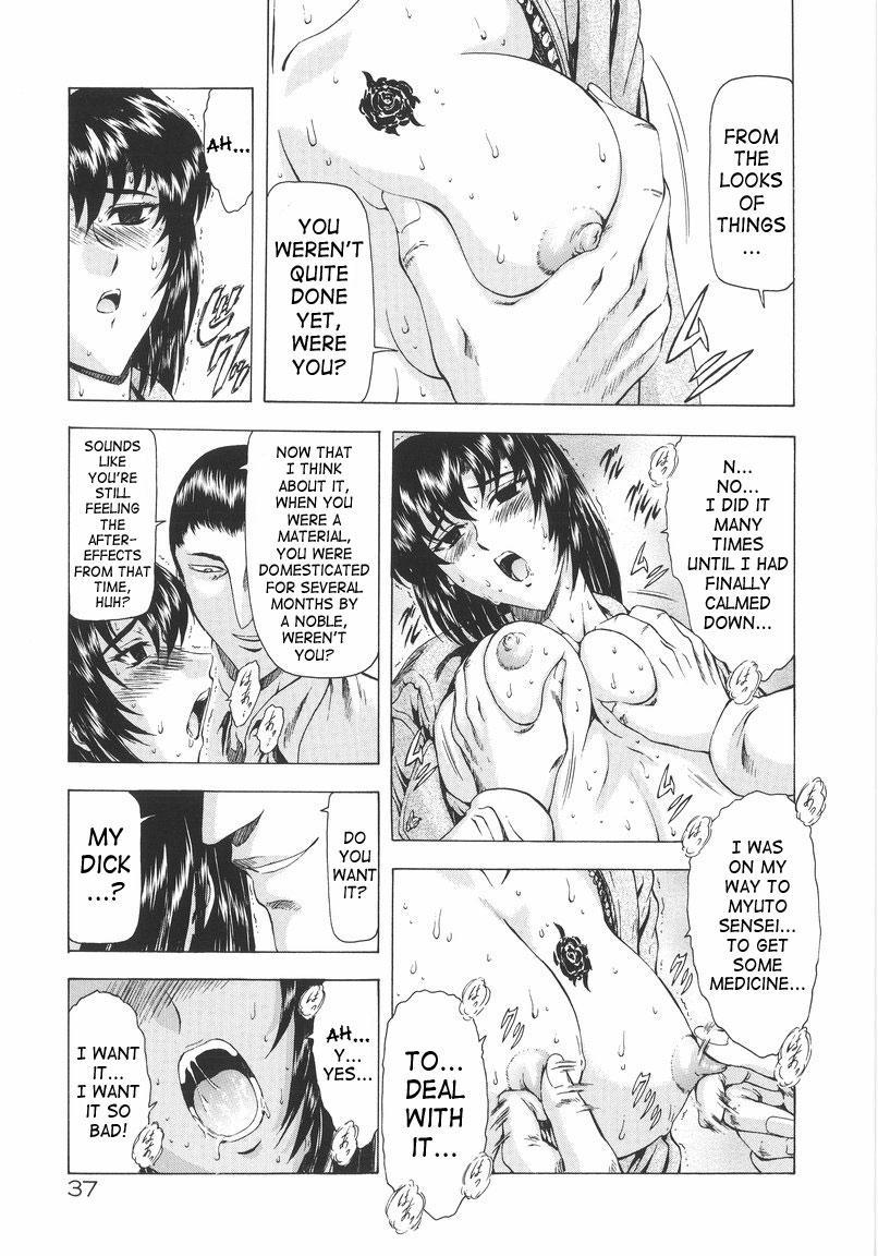 Ginryuu no Reimei | Dawn of the Silver Dragon Vol. 1 37