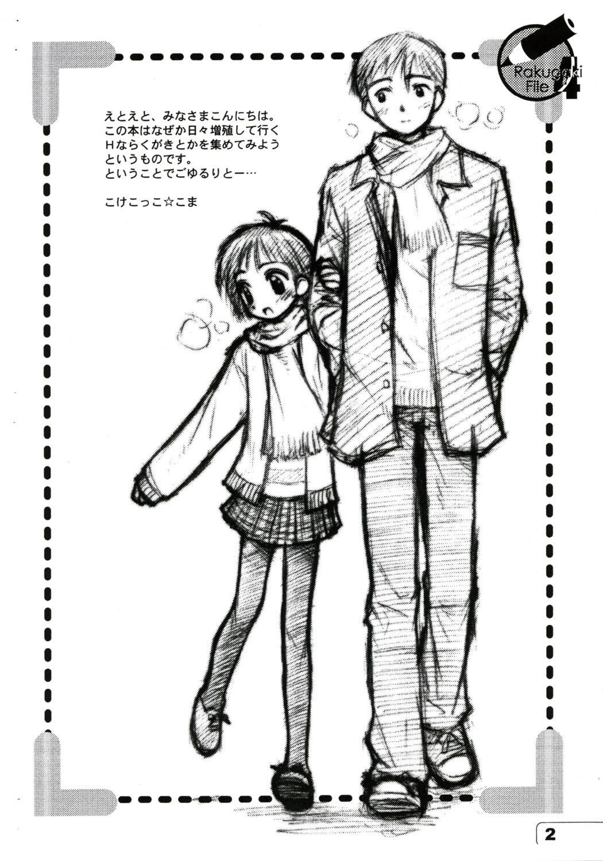 Rakugaki File 4 1