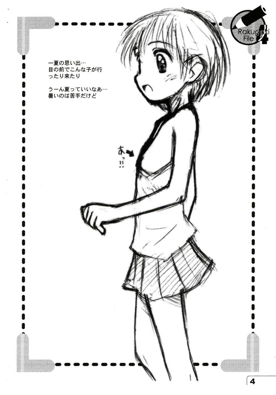 Rakugaki File 4 3